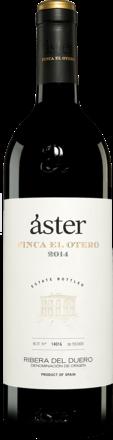 Áster »Finca El Otero« 2014
