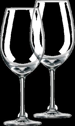 Schott Zwiesel Ivento Weißwein 2er-Gläserset