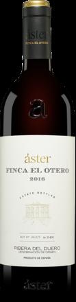 Áster »Finca El Otero« 2016