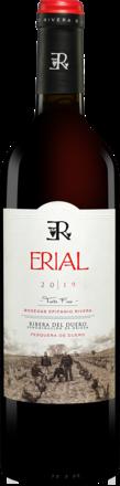 Erial 2019