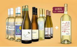 Weißwein-Genießer-Paket + Quietus Verdejo Magnum